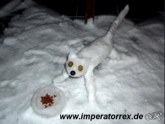 Bauanleitung Schneekatze