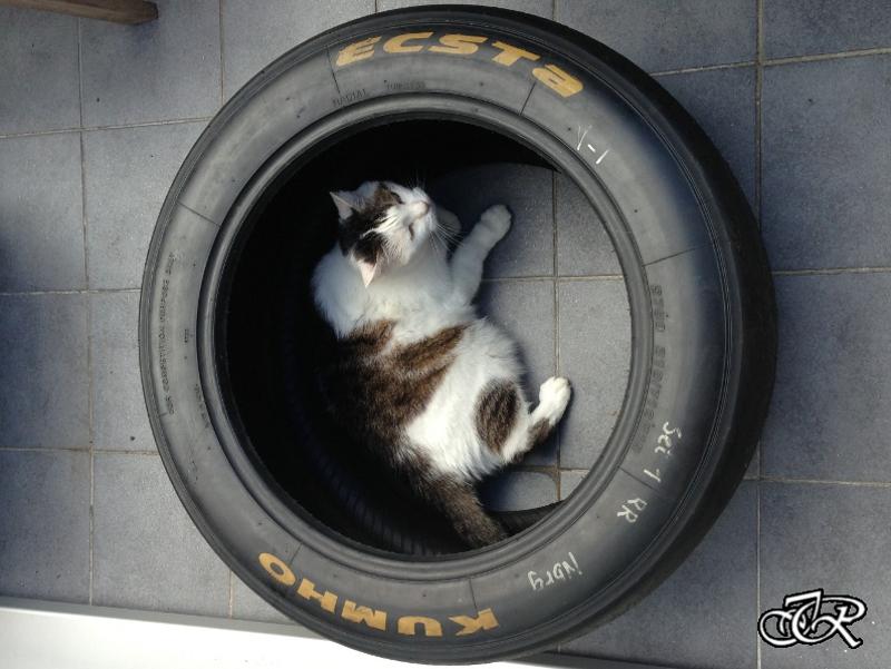Reifentisch Slick